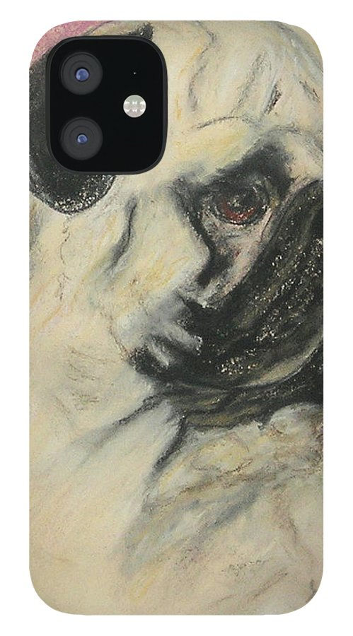 Pug IPhone 12 Case featuring the drawing Pugnacious by Cori Solomon