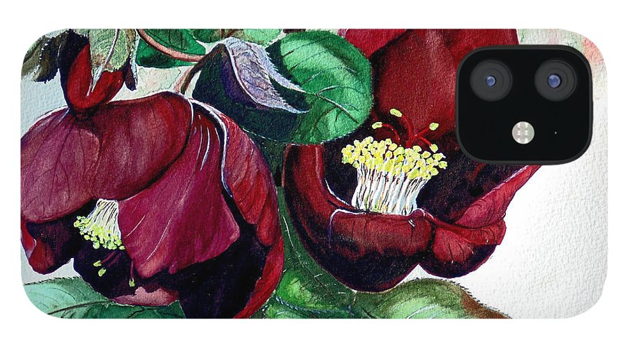 Red Helleborous Painting Flower Painting  Botanical Painting Watercolor Painting Original Painting Floral Painting Flower Painting Red Painting  Greeting Painting IPhone 12 Case featuring the painting Red Helleborous by Karin Dawn Kelshall- Best