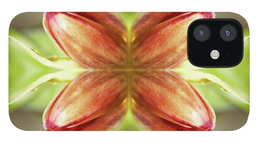 Tranquility iPhone 12 Case featuring the photograph Red Tulips by Silvia Otte