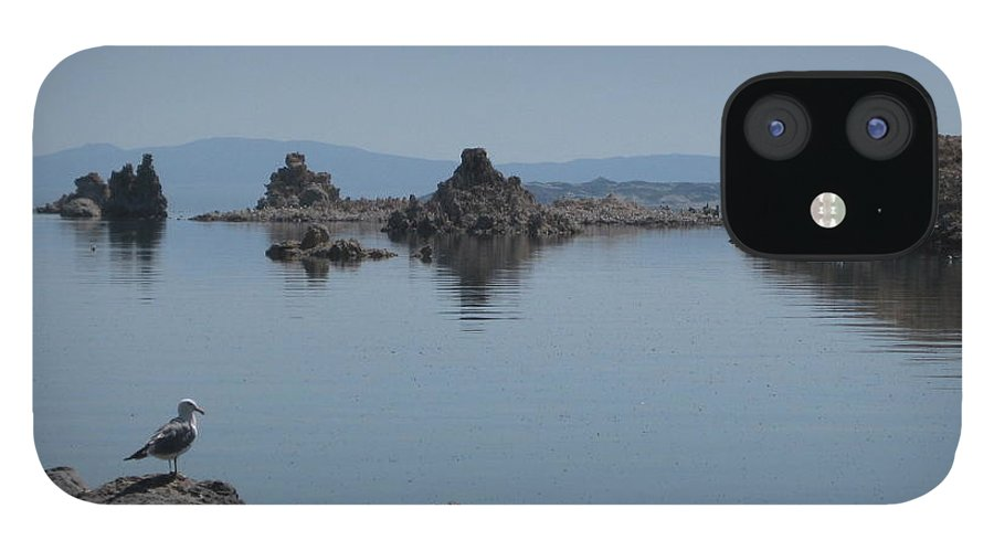 Yosemite IPhone 12 Case featuring the photograph Reflection by AC Hamilton