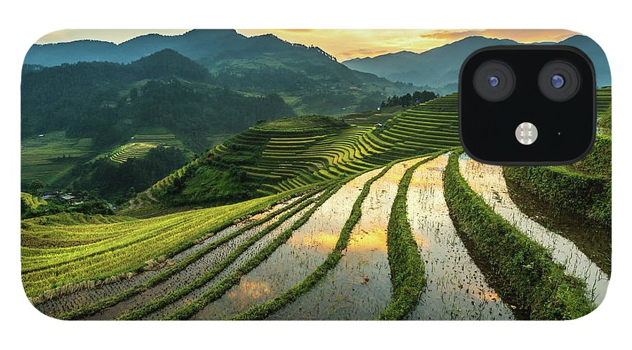 Scenics IPhone 12 Case featuring the photograph Rice Terraces At Mu Cang Chai, Vietnam by Chan Srithaweeporn
