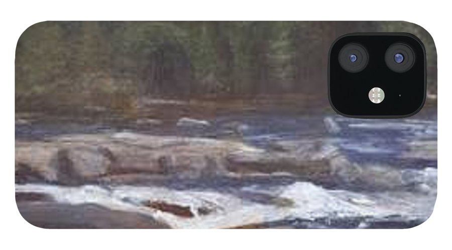 Rocks IPhone 12 Case featuring the painting Rocks by Sheila Mashaw