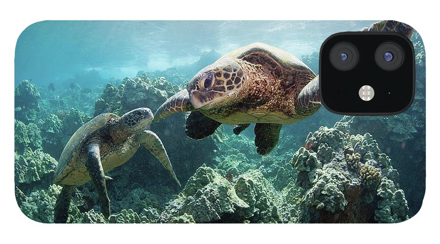 Underwater IPhone 12 Case featuring the photograph Sea Turtles by M Swiet Productions