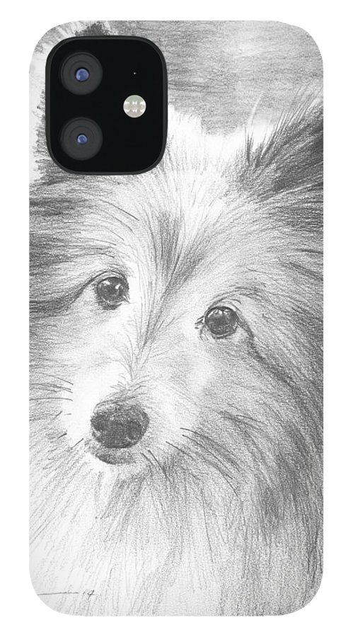 <a Href=http://miketheuer.com Target =_blank>www.miketheuer.com</a> Sheltie Dog Pencil Portrait Mike Theuer iPhone 12 Case featuring the drawing Sheltie Dog Pencil Portrait by Mike Theuer