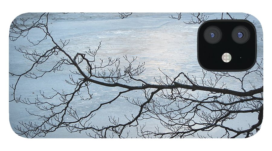 Ice IPhone 12 Case featuring the photograph Shimmering Ice by Deborah Flusberg