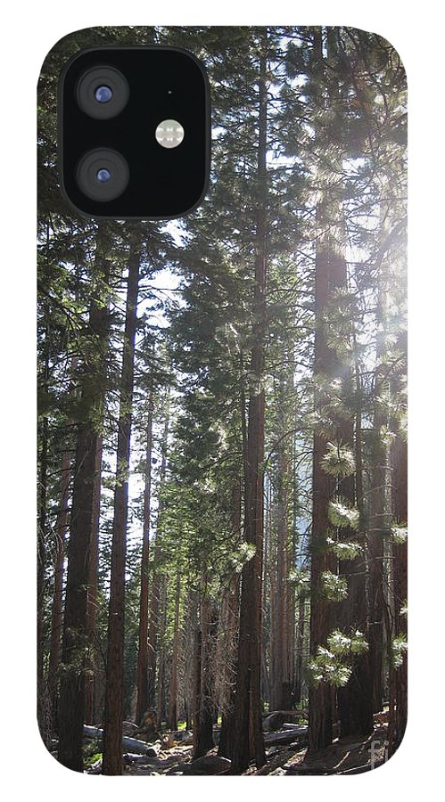 Yosemite IPhone 12 Case featuring the photograph Shimmering Pines by AC Hamilton