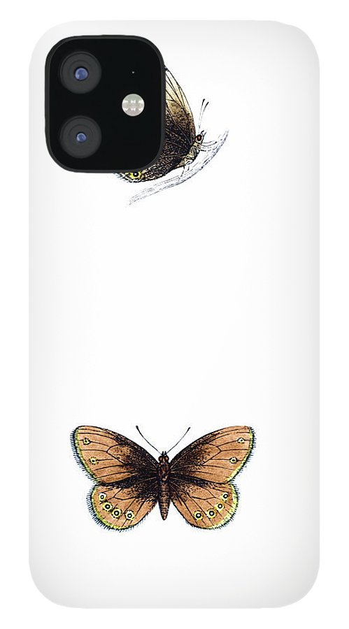 Engraving iPhone 12 Case featuring the photograph Silver Bordered Ringlet - Hand Coloured by Andrew howe