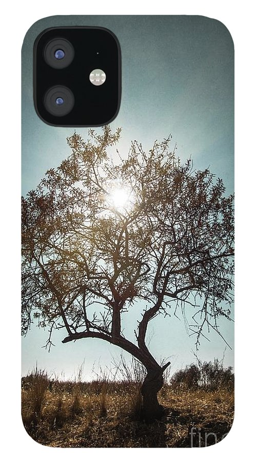 Dark iPhone 12 Case featuring the photograph Single Tree by Carlos Caetano