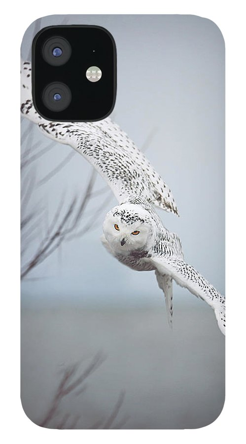 Wildlife IPhone 12 Case featuring the photograph Snowy Owl In Flight by Carrie Ann Grippo-Pike