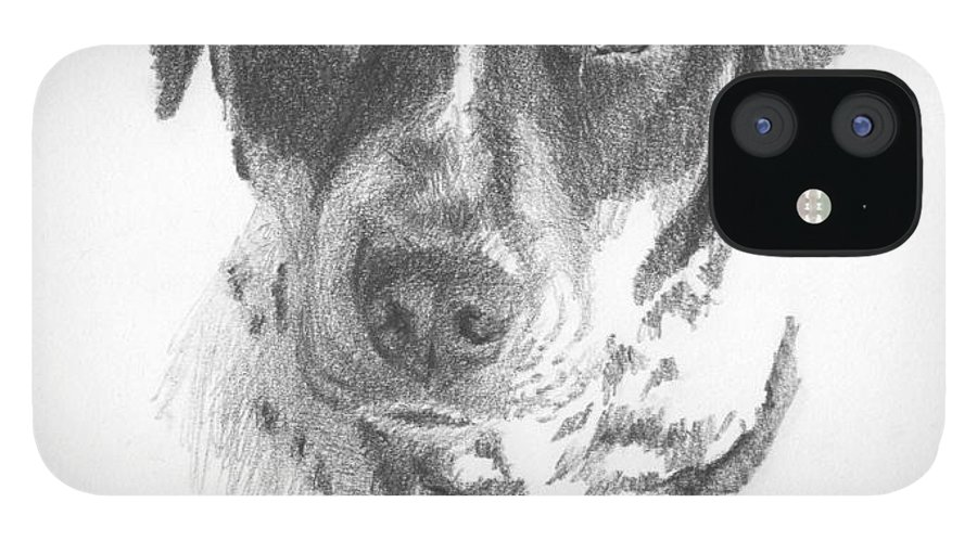 <a Href=http://miketheuer.com Target =_blank>www.miketheuer.com</a> Spaniel Pencil Portrait iPhone 12 Case featuring the drawing Spaniel Pencil Portrait by Mike Theuer