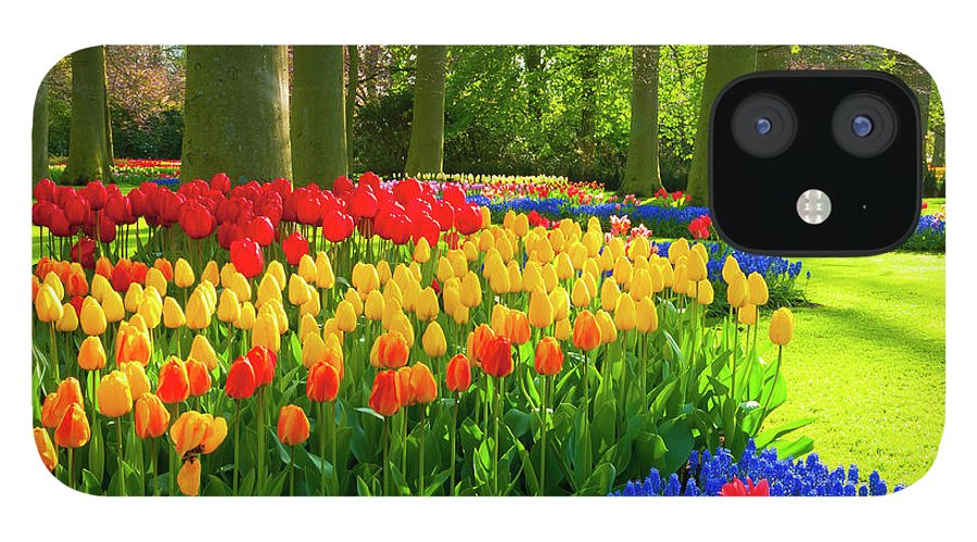 Flowerbed IPhone 12 Case featuring the photograph Spring Flowers In A Park by Jacobh