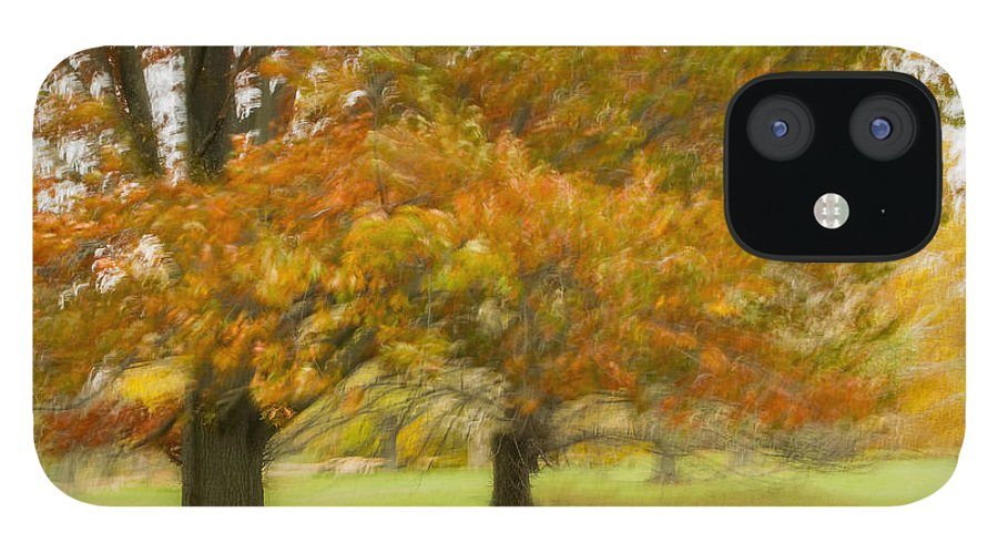 Autum Colours iPhone 12 Case featuring the photograph Swirling Autumn by Marilyn Cornwell