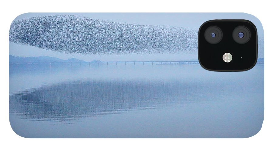 Scenics iPhone 12 Case featuring the photograph The Baikal Teals by Penboy