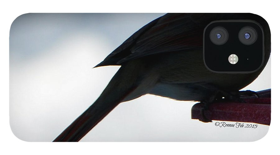 Bird IPhone 12 Case featuring the photograph The Vision by Rennae Christman