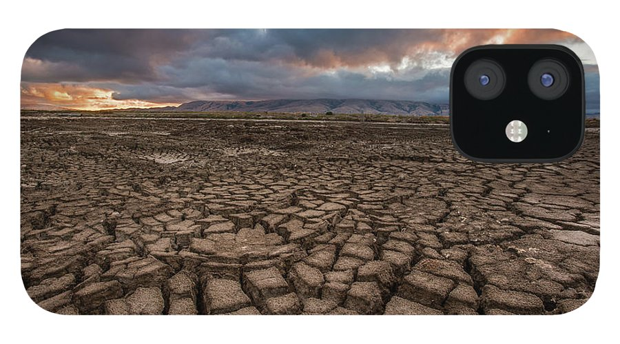 Tranquility IPhone 12 Case featuring the photograph Thirsty by Aaron Meyers