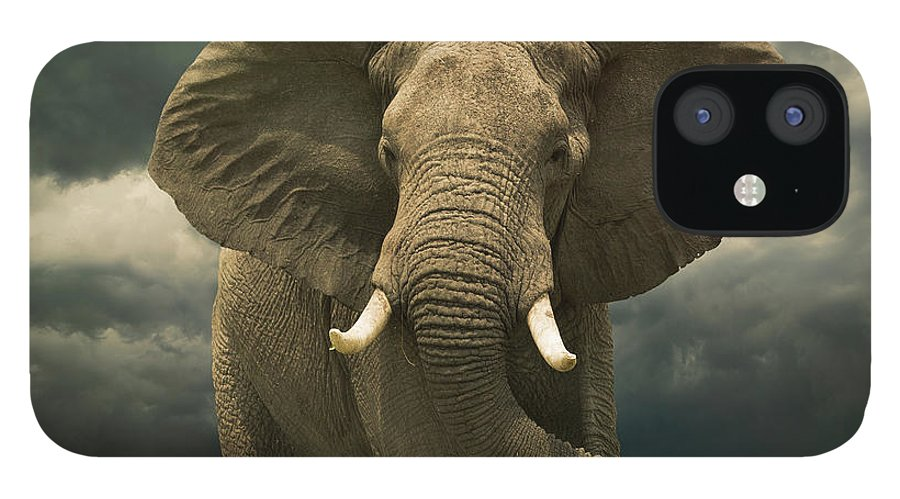 Kenya IPhone 12 Case featuring the photograph Threatening African Elephant Under by Buena Vista Images