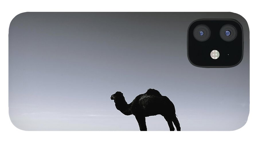 Scenics IPhone 12 Case featuring the photograph Three Camels In The Sahara Desert by Zodebala