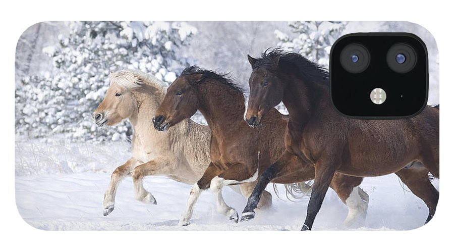 Horse IPhone 12 Case featuring the photograph Three Snow Horses by Carol Walker