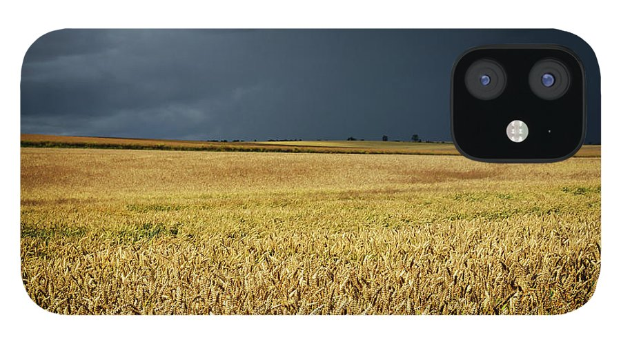 Scenics IPhone 12 Case featuring the photograph Thunderstorm Clouds Over Wheat Field by Avtg