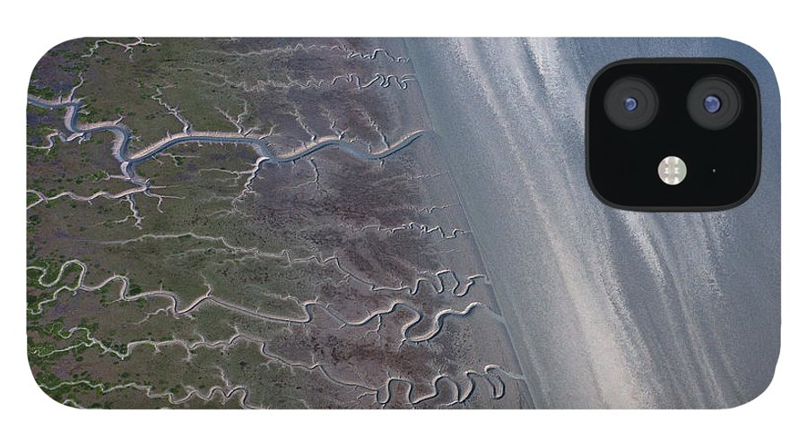 Feb0514 iPhone 12 Case featuring the photograph Tidal Channels At Low Tide Cook Inlet by Ingo Arndt