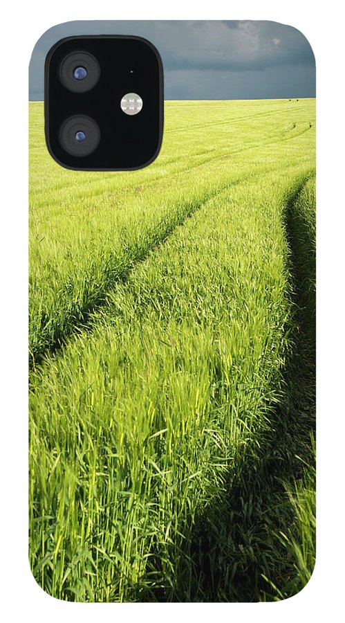 Scenics IPhone 12 Case featuring the photograph Tire Tracks In Grain Field by Thomas Winz