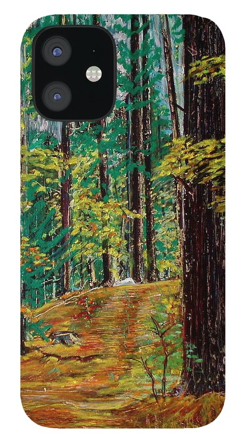 New Hampshire IPhone 12 Case featuring the pastel Trail At Wason Pond by Sean Connolly