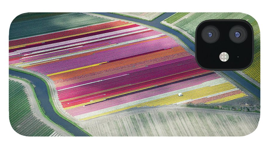 Curve IPhone 12 Case featuring the photograph Tulip Fields, Aerial View, South by Frans Sellies