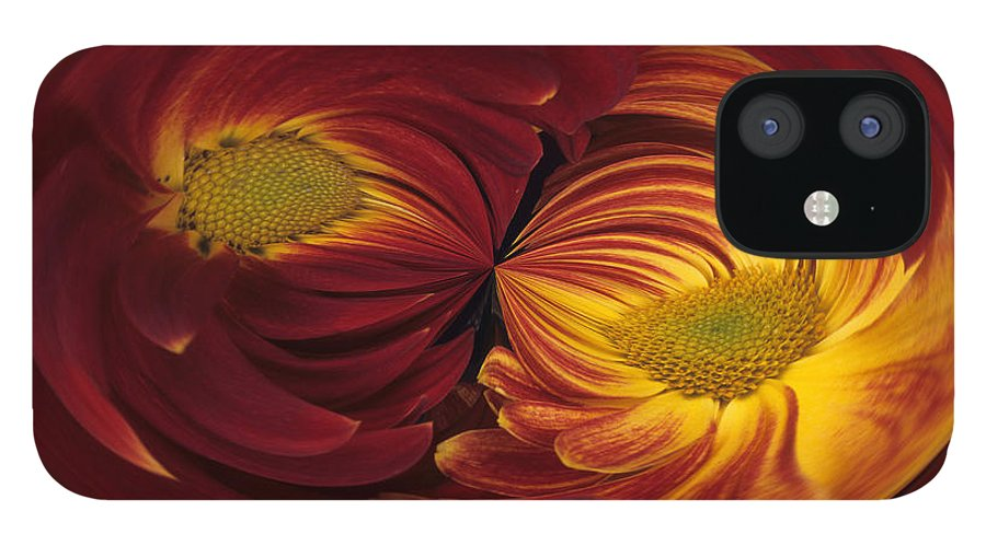 Abstract IPhone 12 Case featuring the photograph Twin Gerbera Abstract by Keith Gondron