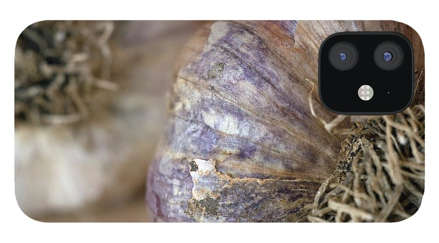 Garlic IPhone 12 Case featuring the photograph Two Garlic Heads, Close-up by Rebecca E Marvil
