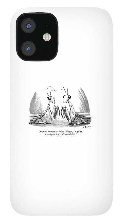 Two Praying Mantises Facing Each Other IPhone 12 Case