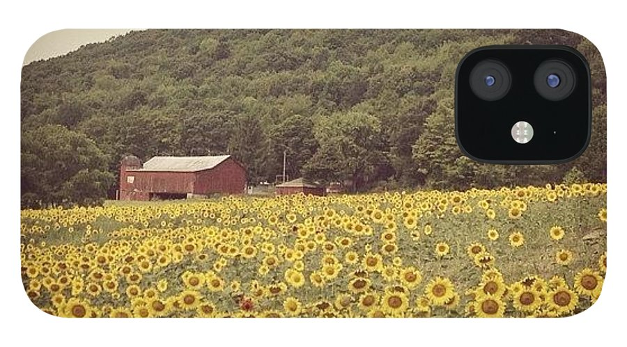 Beautiful IPhone 12 Case featuring the photograph Upstate by Mike Maher