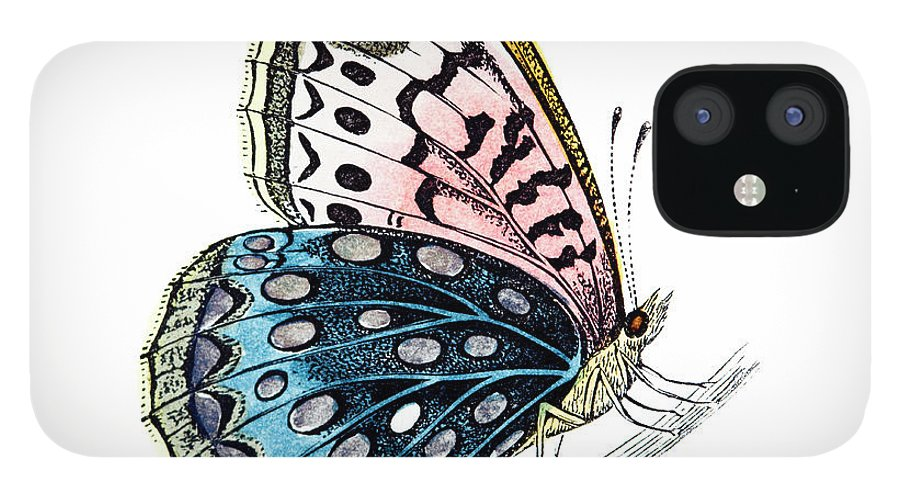 Engraving IPhone 12 Case featuring the digital art Venus Fritillary Butterfly by Andrew howe