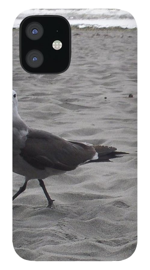 Seagull IPhone 12 Case featuring the photograph What are you looking at by Valerie Josi