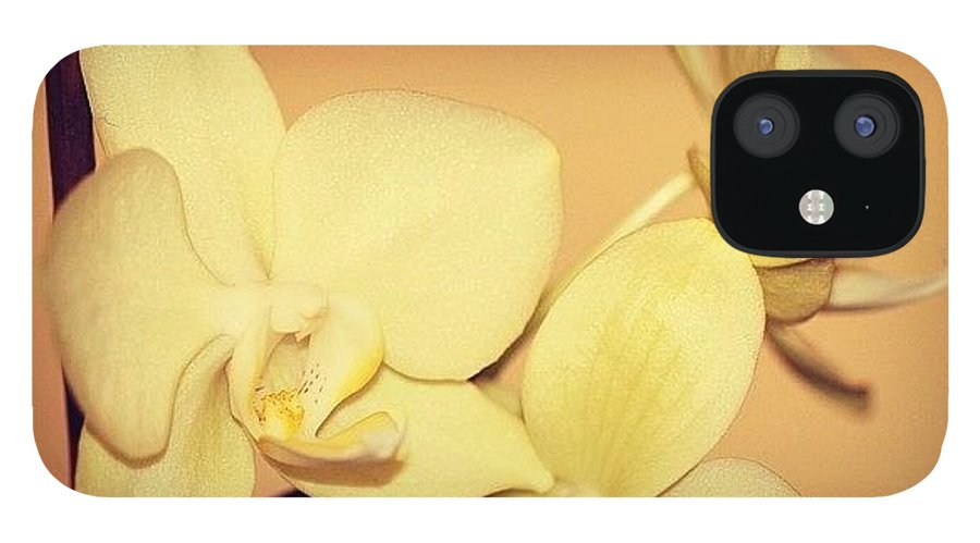 Flower IPhone 12 Case featuring the photograph White Orchid by Luisa Azzolini