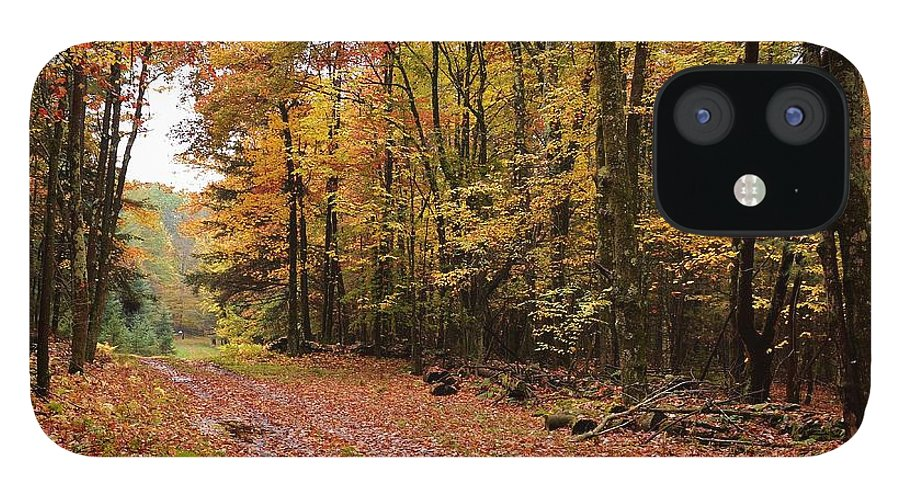Landscape iPhone 12 Case featuring the photograph Woods walk by Lisa Kane