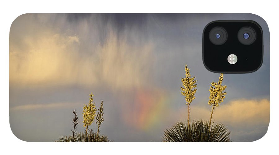 Tranquility IPhone 12 Case featuring the photograph Yuccas, Rainbow And Virga by Don Smith