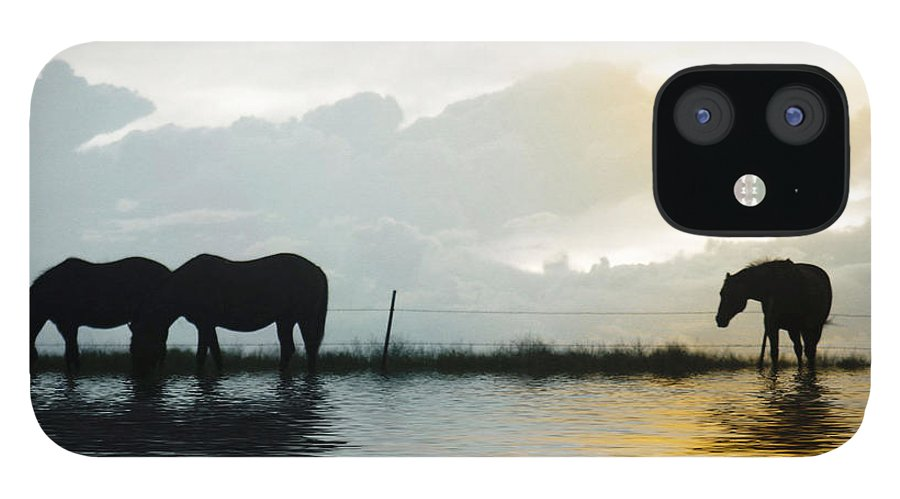Horse IPhone 12 Case featuring the photograph Alone by Susan Kinney