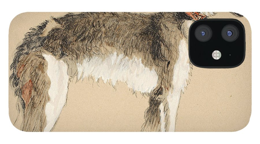 Dog; Dogs; Hound; Pet; Pets; Wolfhound IPhone 12 Case featuring the painting Borzoi by Cecil Charles Windsor Aldin