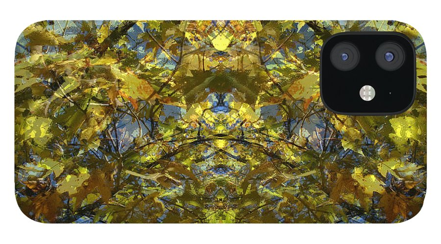 Golden Rorschach IPhone 12 Case featuring the photograph Golden Rorschach by Seth Weaver