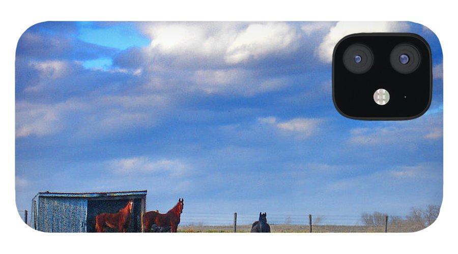 Landscape IPhone 12 Case featuring the photograph Horse Ranch Landscape by Steve Karol