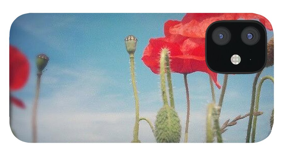 Poppy IPhone 12 Case featuring the photograph Poppies by Vicki Field