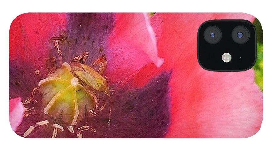 Pink IPhone 12 Case featuring the photograph Poppy #macro#nature #naturelovers by Anita Callister Jones