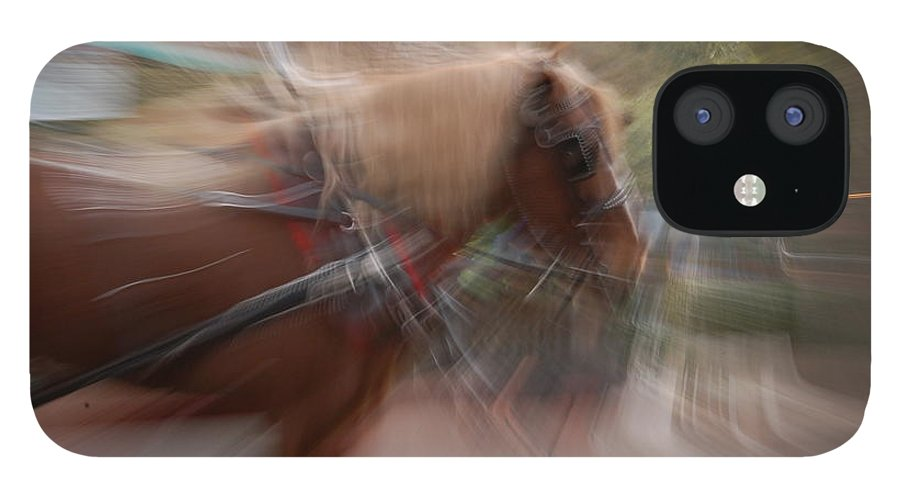 Horse IPhone 12 Case featuring the photograph The Horse by Randy J Heath