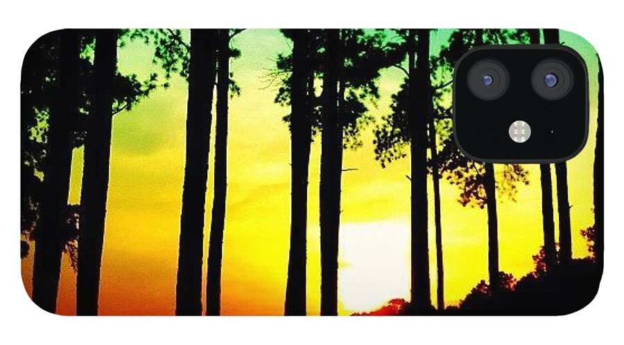 Instatrees IPhone 12 Case featuring the photograph Tree Shadow by Katie Williams