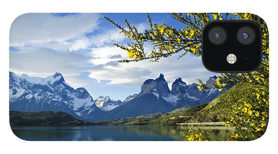 Patagonia IPhone 12 Case featuring the photograph Springtime in Torres del Paine by Michele Burgess