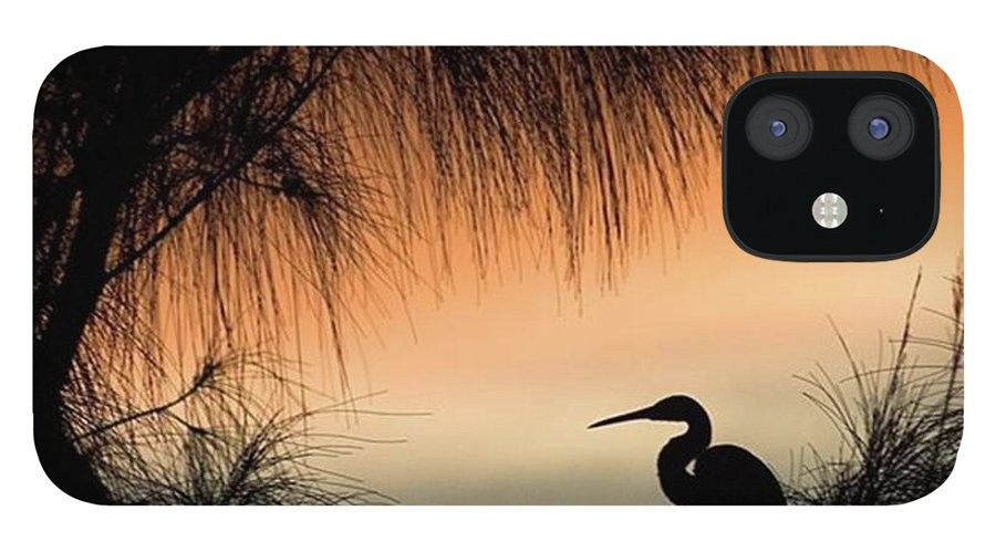 Egret IPhone 12 Case featuring the photograph A Snowy Egret (egretta Thula) Settling by John Edwards