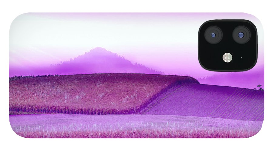 Landscapes IPhone 12 Case featuring the photograph A Sweet Harvest by Holly Kempe