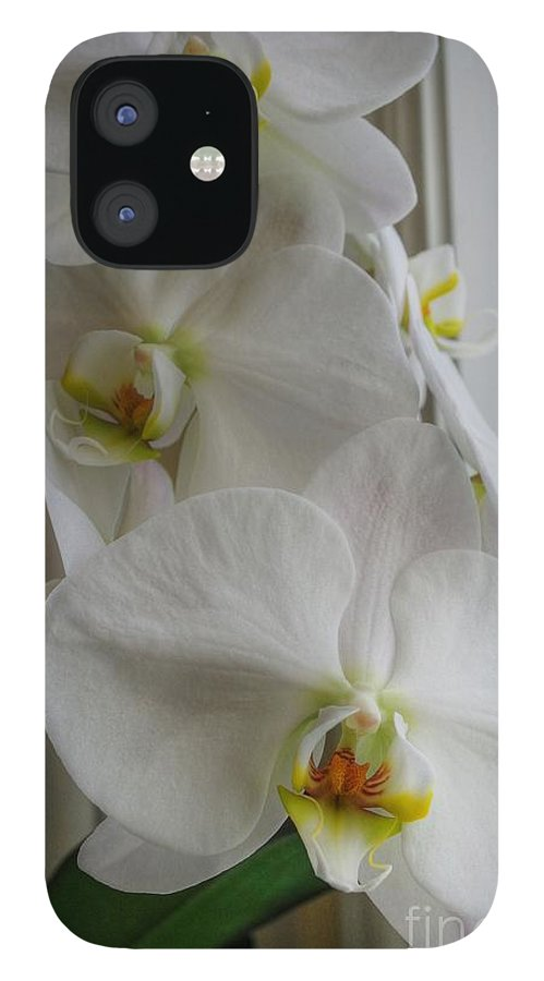 Orchid IPhone 12 Case featuring the photograph A White Orchid Day by David Bearden