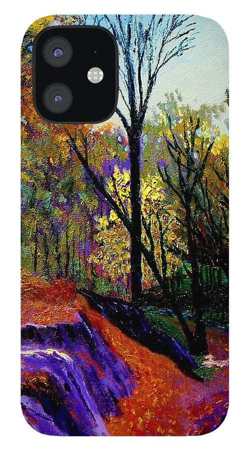 Twilight iPhone 12 Case featuring the painting Ap 10 26 by Stan Hamilton