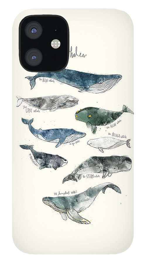 Whales iPhone 12 Case featuring the painting Whales by Amy Hamilton